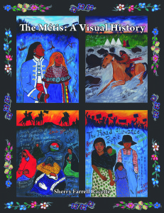 The Metis - A Visual History Cover