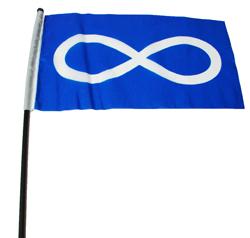 Handheld Flag